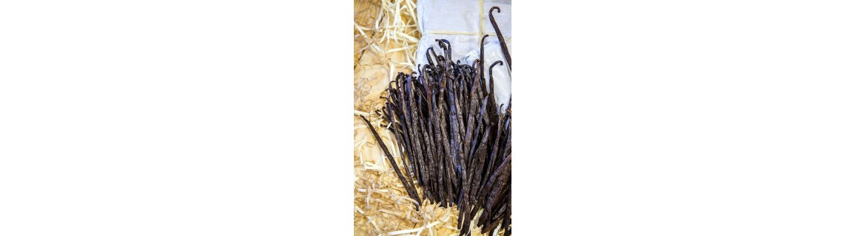 Madagascar Gourmet Vanilla